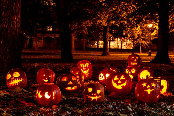 Fall Celebrations